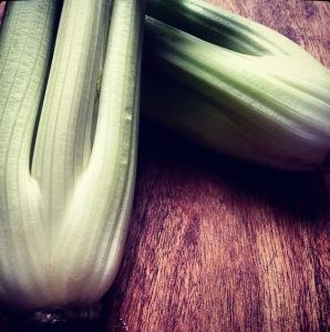 Celery sq
