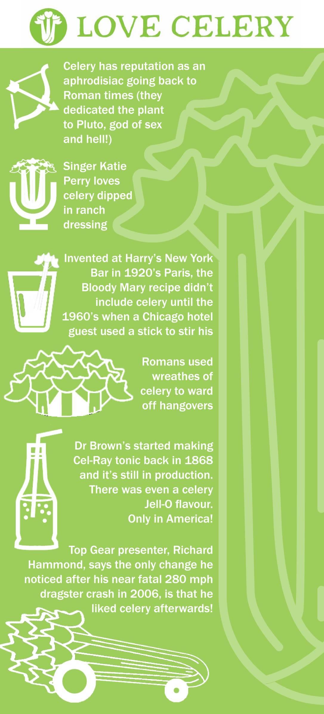 Love celery infographic 3